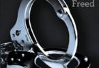 Fifty Shades Freed Epub