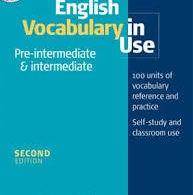 English Vocabulary In Use Pre-Intermediate And Intermediate pdf