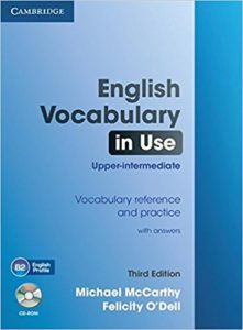 English Vocabulary In Use Upper Intermediate PDF